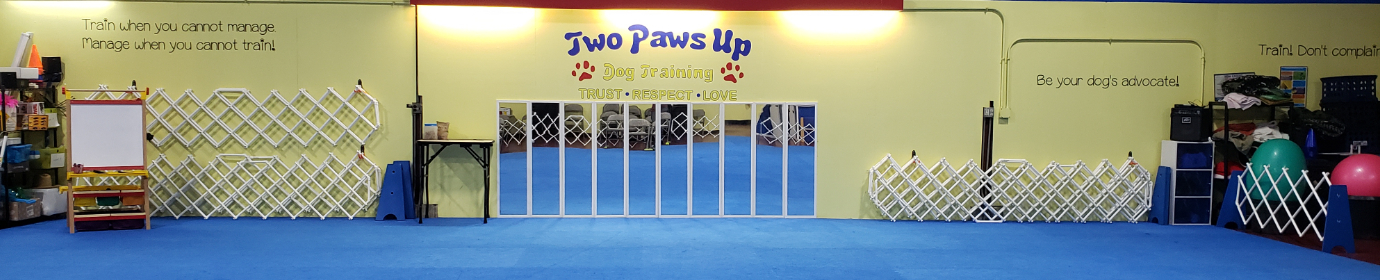 Two Paws Up Dog Training